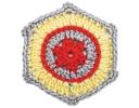 Carol Ann Hexagon