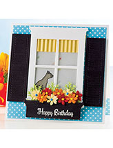 Window Box Birthday