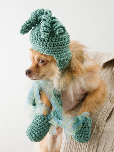 Dog Hat, Scarf, Bootie Set Crochet Pattern
