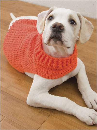 Free Easy Knitting Patterns For Medium Dog Jumpers : Crochet - Pet Patterns - Hunters Dog Sweater