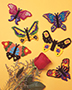 Butterfly Magnets Pattern